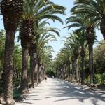 Foto di Giardini Iblei