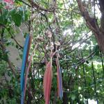 Foto de Unplugged Hostel Pocitos