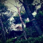 Photo de 2318166