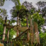 Edward James sculptor garden, Las Pozas
