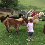 Foto de Widmouth Farm Cottages
