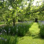What a lovely garden to visit, highly recommended.