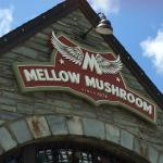 Outside the Mellow Mushroom Blowing Rock