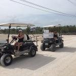 Golf carts with phat tires.