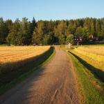 Authentic Finnish countryside