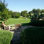 Magnifique résidence perdue dans les oliviers vue de notre chambre