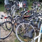 Les vélos à louer... imaginez les chambres !