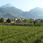 Photo of Villa Nicolli Romantic Resort