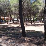 Parco dove si trovano le villette.