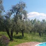 Photo of Agriturismo I Pitti