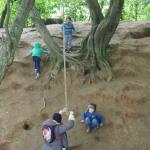 rope swings