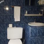 Salle d'eau (coin douche à droite du lavabo)