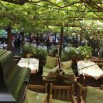 Schurks Restaurant, looking down the terraced levels under grapevine canopy