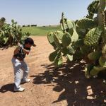 Desert golfing. Worth a visit.