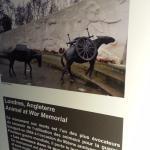 Photo de Muséum d'Histoire Naturelle de Marseille