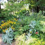 Beautiful gardens with a huge variety of native plants.