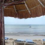Photo de Alberto's Beach Bar Restaurant