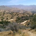 View from one of the mountain biking trails