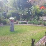 Serene garden