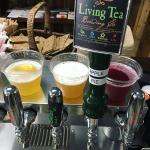 Kombucha on tap!  So many to choose from