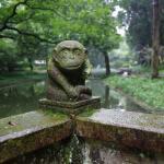 Jiufeng Park of Huangyan Foto