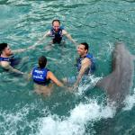 Photo de Delphinus Xcaret