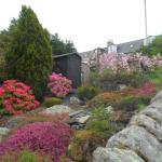 Bonnie View garden