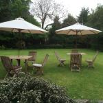 Tranquill rear garden