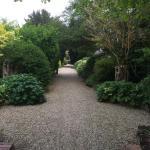 Rear path