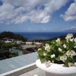 Foto de Villa Mimosa Maison Deluxe B&B