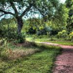 lots of great walking trails.