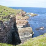 Mull Head Nature Reserve