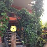 Hotel Brilla Sol Foto