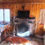 Living Room/dining Room - Cabin 14