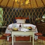 The cool decorated Yurt , that is really set in the woods