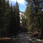 spring thaw feeding the creek