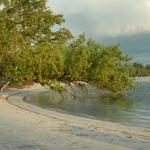 Jamaica Grande Beach Foto