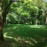 Blackbury Camp