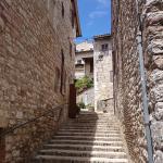 Photo of Trattoria da Erminio