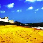 Oasis Beach Resort Foto