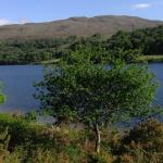 Photo of Linnhe Lochside Holidays