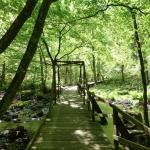 Photo de Soderasens National Park