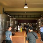 Cortona Wine Tours Foto