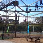 High ropes on Phillip Island