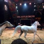 Big Apple Circus NYC Queens