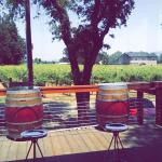 Foto de Rivino Winery