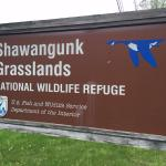 Shawangunk Grasslands National Wildlife Refuge