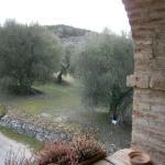 Photo of Antica Tenuta Le Casacce
