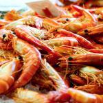 Seafood Works