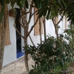 Foto di L'Oasi Villaggio Albergo